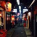 有別於新宿大樓林立現代繁榮的印象,這是藏身小巷裡的思い出横丁