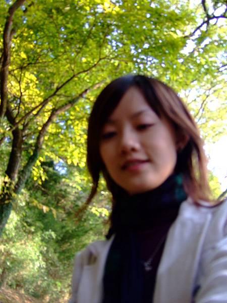 一個人愜意地走在樹林中