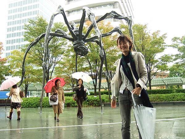 和白天的蜘蛛拍一張