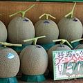 路過水果店,看到一顆叫價四百塊的哈密瓜,嚇屎人~
