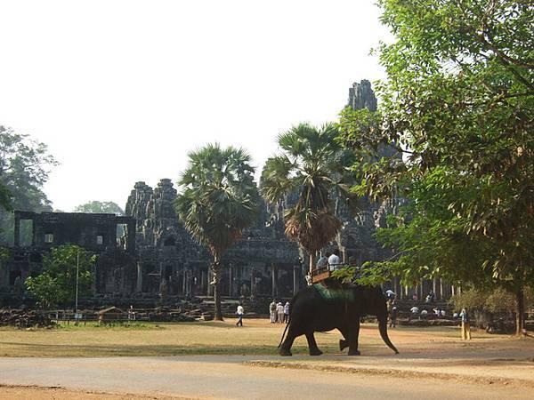 遠方是巴揚寺北口,快九點遊客也增加了許多,還有人坐大象遊覽呢