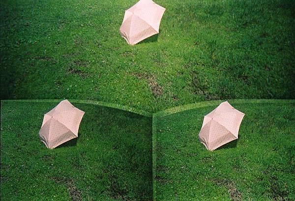 哈  三隻雨傘標