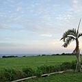 民宿前方是一大片草原,再過去就是海了完全沒障礙,眼前一片寬闊