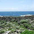 最南端到囉!礁岸讓我想起好幾年前有八個人夜半來這裡跨年倒數