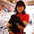 接下來進了一間寵物用品店,店狗是一隻小黑貴賓唷