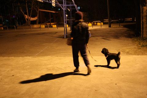 1/14  每晚照例的蛙蛙散步時間  今晩還真是冷!