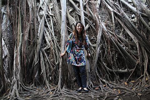 大榕樹的根怎麼會變得這麼可怕啊...不舒服