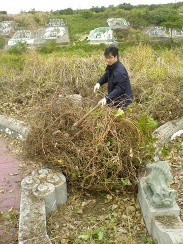 可怕的藤蔓雜草多到可以滾成球~(哥~惠如看到這張會更愛你!)