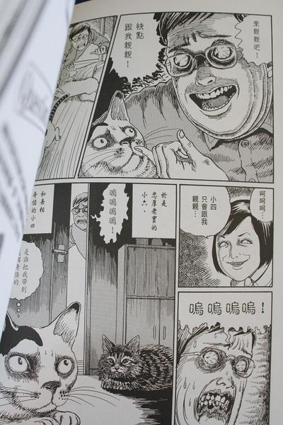 伊藤潤二的貓日記