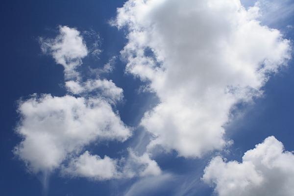這禮拜雖然熱翻了,但能看到晴朗的白雲藍天~值得啦!