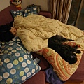 晚上母子倆睡得東倒西歪