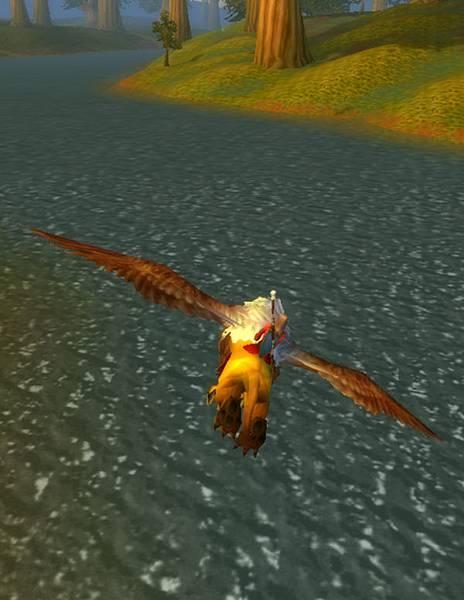 飛過河流平原
