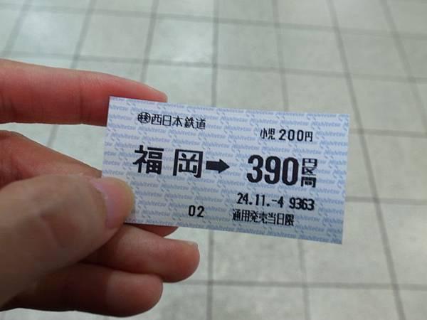 R0019595.JPG
