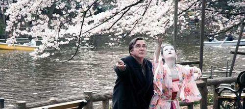 當櫻花盛開.jpg