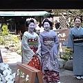 京都的藝妓