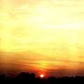 ap_20071106105955831.jpg