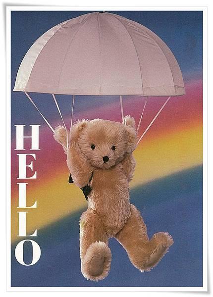 hello teddy