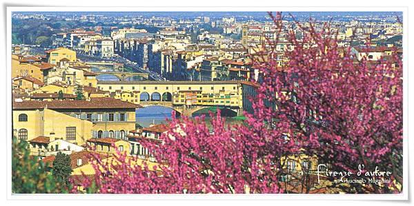 Firenze Panorama