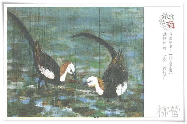 柳營 野鳥水雉