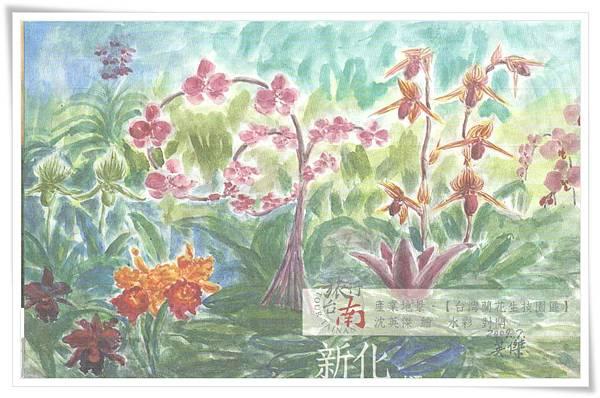 新化 台灣蘭花生技園區