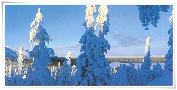 芬蘭 雪景