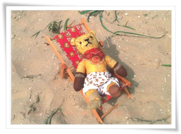 beach teddy