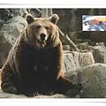bear symbol in RU1