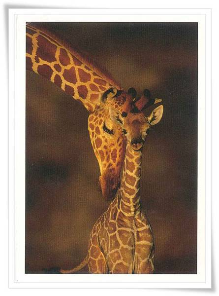 giraffe greeting