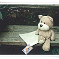 bear's reading1