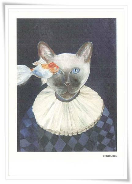 CN cat