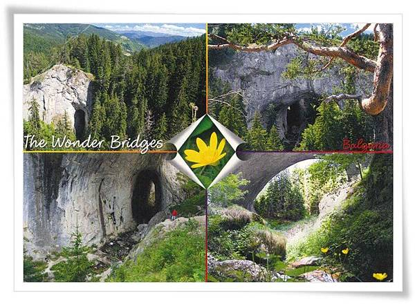 the wonder bridges