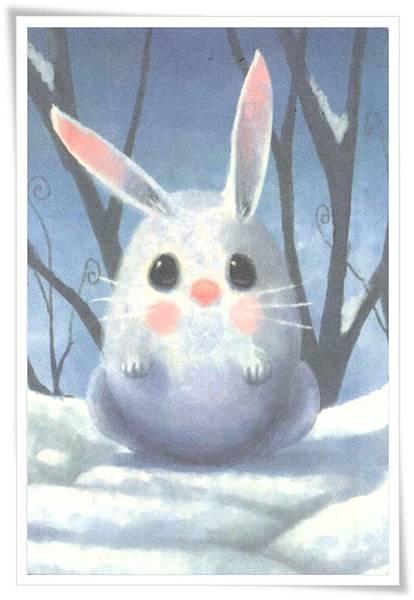 cn rabbit