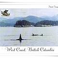 west coast british columbia1