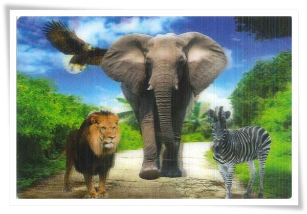 3D animal.jpg