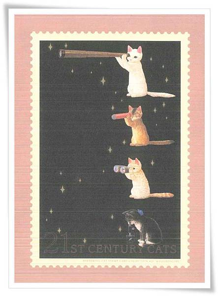 21st century cats.jpg