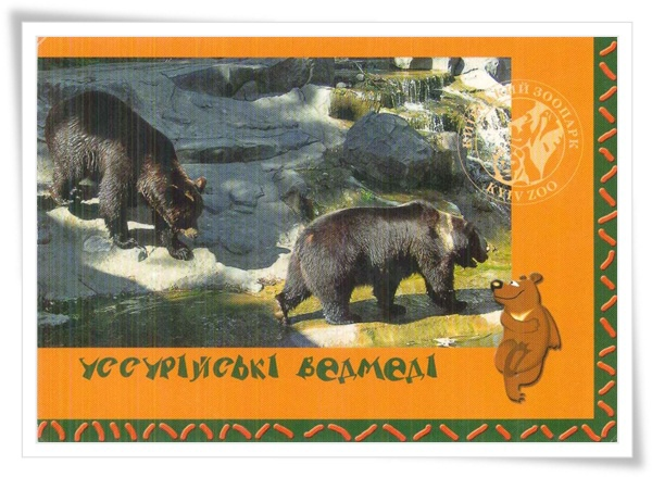 UA_bear.jpg