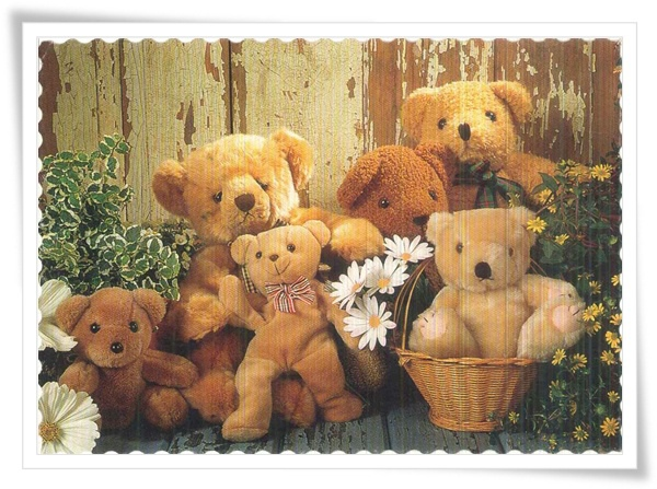 cz teddy bears.jpg