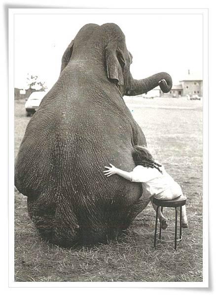 hug with elephant.jpg