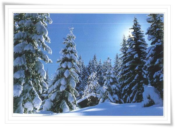 Austria view.jpg