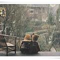 the teddies 19781.jpg