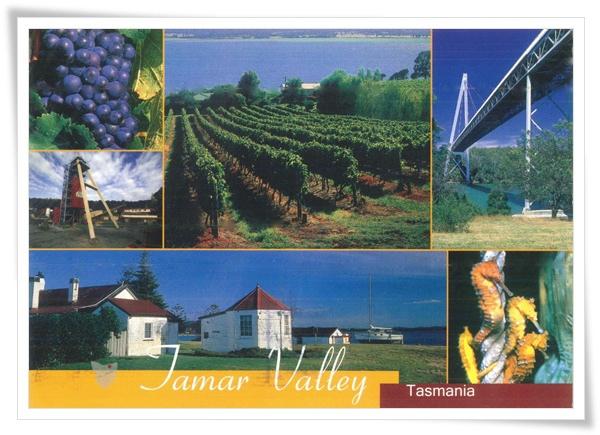 tamar valley.jpg