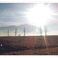 DE_field.jpg