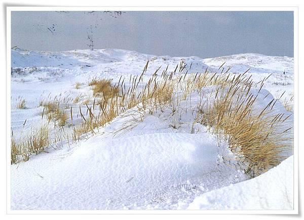 DE_winter.jpg