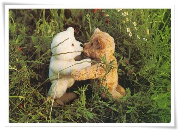 teddy hug_DE