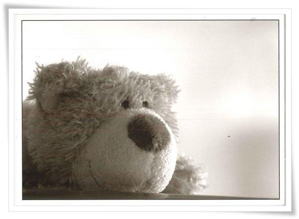 bw bear_DE.jpg