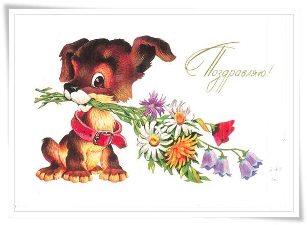 puppy flower.jpg