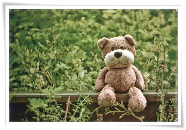 happy card_bear_RU.jpg