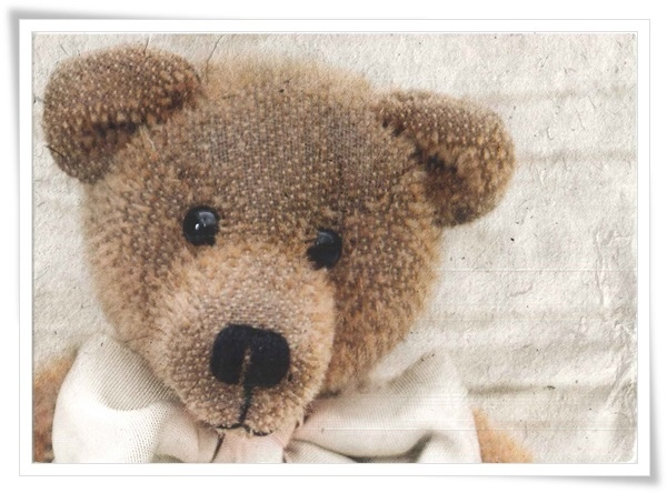 teddy_Finland.jpg