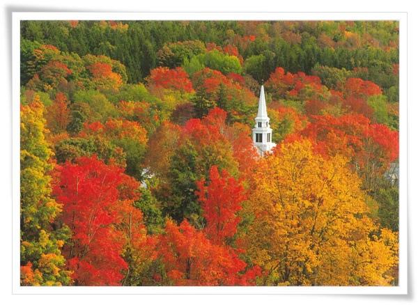 autumn in new england.jpg