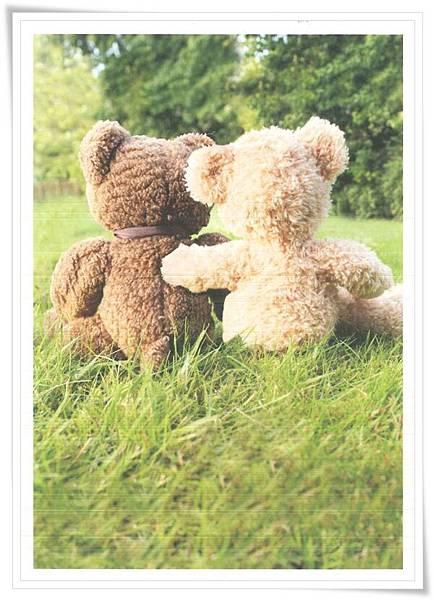 bear_huge hug_NL.jpg